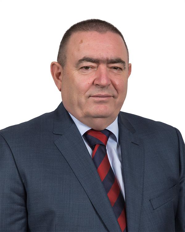 Goran Hrnić - Član Uprave