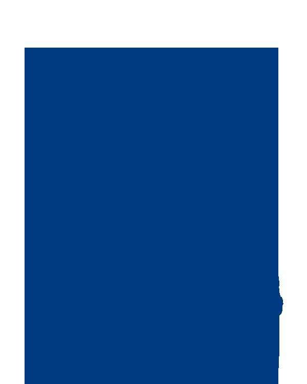 Mario Hajdarhodžić - Član Uprave